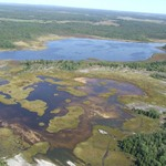 Gosling Marsh Aerial Photo