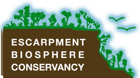 Escarpment Biosphere Conservency Logo